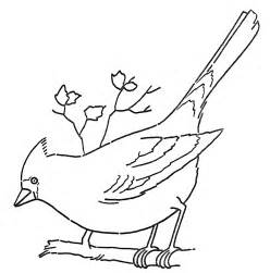 line coloring page cardinal on branch the graphics