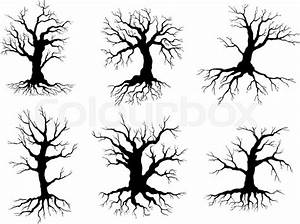 Different Black Leafless Deciduous Winter Tree Silhouettes