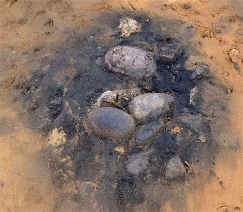 cuisiner une vieille les découvertes archéologiques ecosse une aire de repos