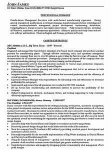 how to write a executive summary resume writing resume With executive summary resume samples