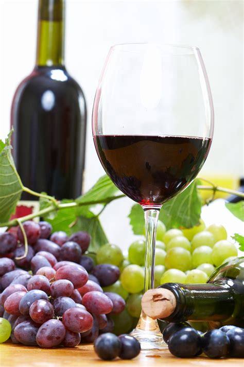 muscadine wine how to make muscadine wine
