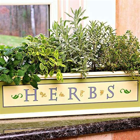 Windowsill Herb Planter by Great Budget Friendly Gifts For Gardeners