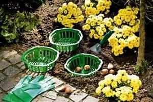 Pflanzkörbe Für Blumenzwiebeln : 3 x pflanzschale f r blumenzwiebeln zwiebeln pflanzkorb ~ Lizthompson.info Haus und Dekorationen