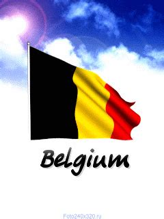 Belgium GIF - Find & Share on GIPHY