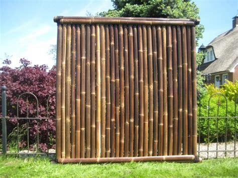 bambuszaun asagi  cm hoch   cm breit