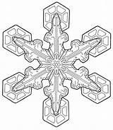 Coloring Pages Adult Adults Holiday Printable Print Christmas Mandala Sheets Colouring Transparent Snowflake Attractive Simple Printables Fun Downloadable Patterns Visit sketch template