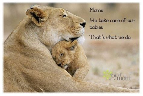 Taking Care Of Mother Quotes Quotesgram. Cute Quotes Goodreads. Motivational Quotes Jump. Quotes About Strength And Beauty Tumblr. Quotes Day Before Wedding. Positive Quotes Nursing. Johnny Cash Quotes About Strength. Motivational Quotes Instagram Accounts. Friendship Quotes Latin