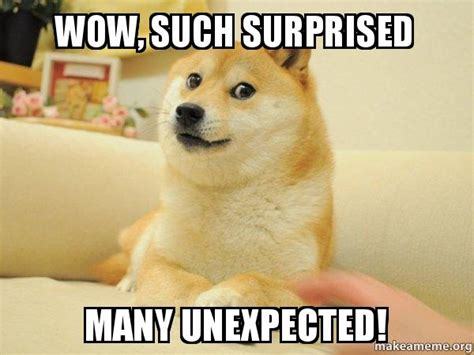 Doge Wow Meme - wow such surprised many unexpected doge make a meme