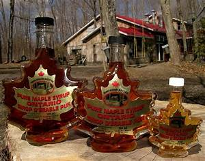 Canadian Maple Syrup | Canada, eh! | Pinterest