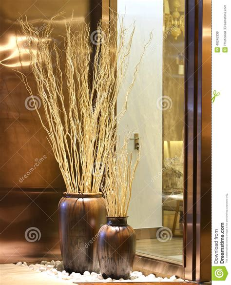 dry twigsdecorative branch mikie flower stock photo