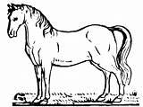 Horse Coloring Printable Bestappsforkids Stumble Tweet sketch template