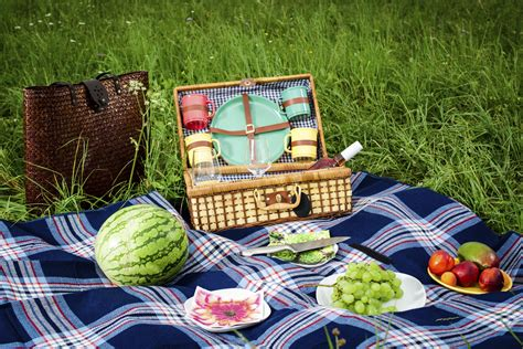 extension cuisine a safe picnic extension food safety expert shares