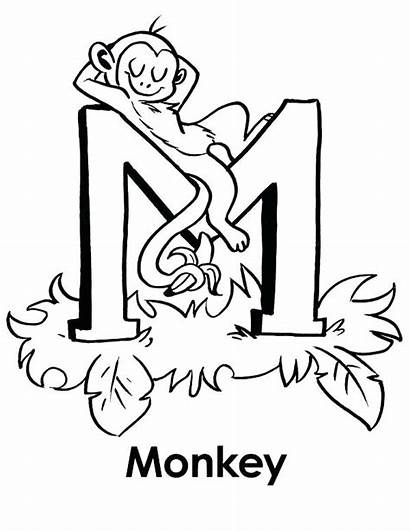 Coloring Letter Pages Letters Monkey Illuminated Sleeps