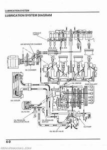 Diagram  Honda Nighthawk 750 Wiring Diagram Full Version