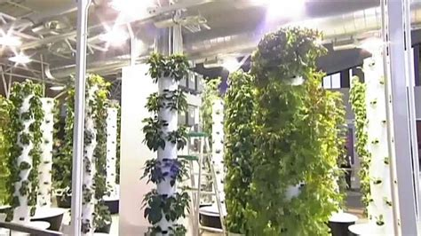 Indoor Tower Garden In The Chicago Airport. Learn More