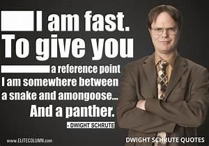 10 Dwight Schru... Good Dwight Quotes