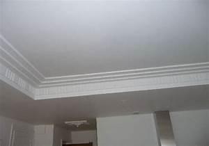 Pose D Un Faux Plafond En Ba13 : fourniture et pose de faux plafond montage a paris et ~ Melissatoandfro.com Idées de Décoration