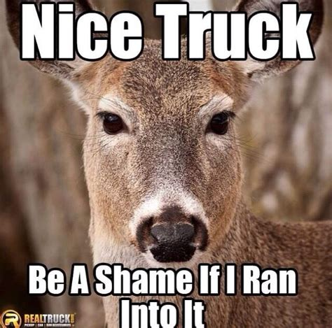 Funny Hunting Memes - quot nice truck be a shame if i ran into it quot deer meme deer hit my car google search lolz