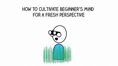 Mind Beginner Beginners Fresh Title Cultivate Perspective