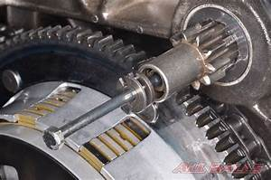 Starter Motor  U0026 Jackshaft