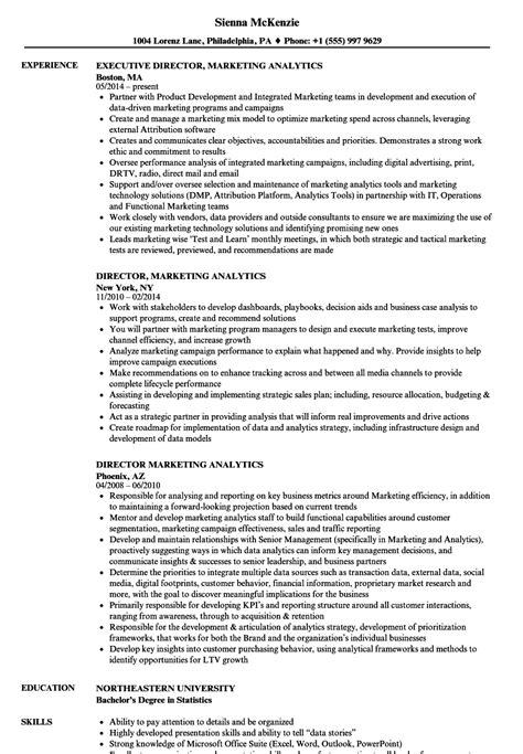 Resume For Analytics by Director Marketing Analytics Resume Sles Velvet