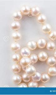 Pink Pearl Necklace String Isolated On White Background ...