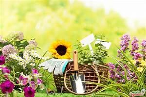 Gartenarbeit Im August :  ~ Lizthompson.info Haus und Dekorationen