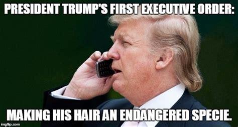 Donald Trump Hair Memes - trump memes decentme me