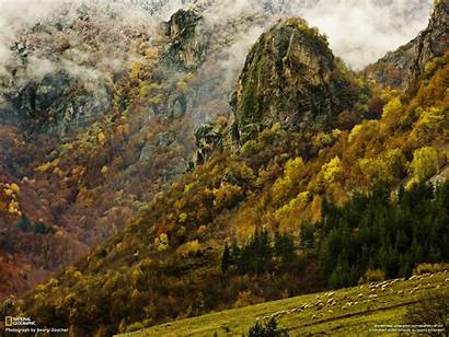 Geographic National Wallpapers Forest Nature Amazing Mountain
