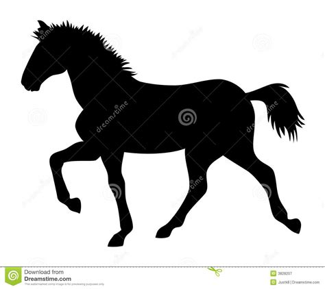 running horse stock vector image  horsehair black