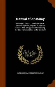 Manual Of Anatomy  Abdomen  Thorax  Head And Neck  Nervous