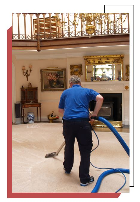 Professional Carpet Cleaning Los Angeles