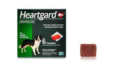 ivermectin for dogs ivermectin for dogs heartgard generic heartworm
