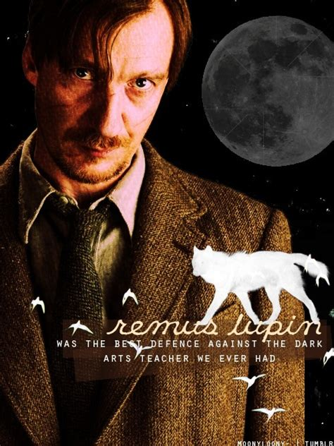 lupin remus potter harry fanart quotes professor background fanpop moony birthday happy club james he character transformation