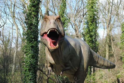 lympne port dinosaur forest dinosaurs reserve safari rex attractions park epic hotel kent african kentattractions information