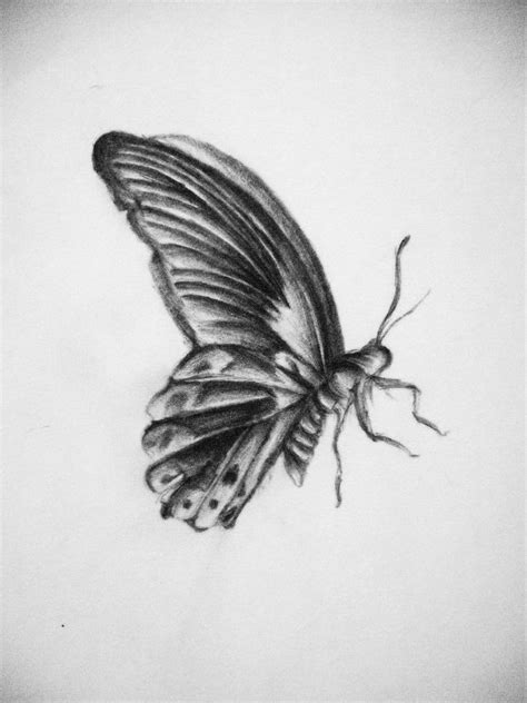 18+ Butterfly Drawings, Art Ideas   Design Trends