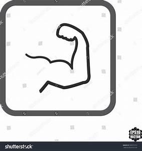 Muscle Biceps Flex Arm Icon Vector Stock Vector 286931012 ...