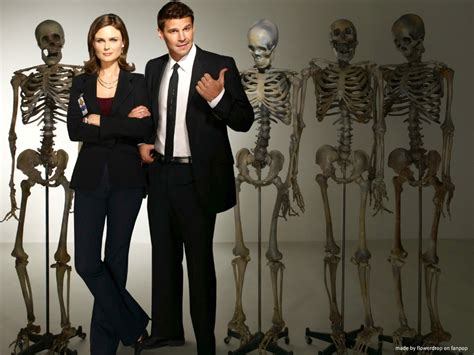 Shuffle all tv shows & television films series more hd wallpapers of tv shows & television films series will be added soon. Bones Wallpaper - Bones Wallpaper (30636185) - Fanpop