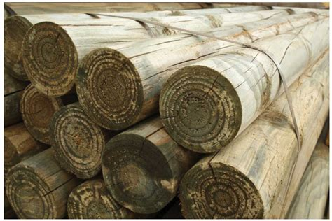 timber log roll garden poles  stakes treated timber