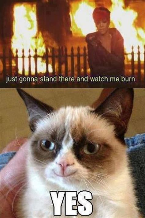Grumpy Cat Yes Meme - tard the angry cat angry cat grumpy cat aka quot tard quot life is good not tard the grumpy