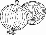 Coloring Pages Onion Onions Drawing Vegetables Vegetable Broccoli Getdrawings Coloringbay Cucumbers sketch template