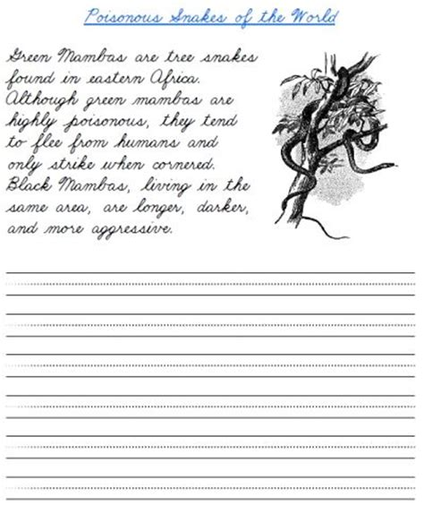 printable cursive handwriting worksheet  green