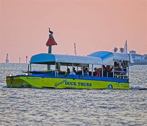 Duck Boat Tours Galveston Texas by Best 25 Galveston Texas Ideas On Pinterest Galveston