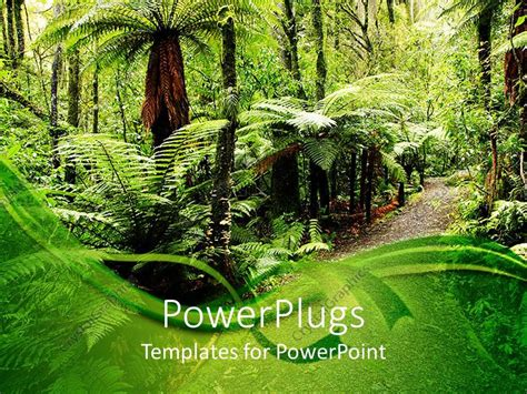 template forest powerpoint template walking path through tropical forest with palm trees 12895