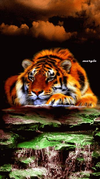 3d Animated Tiger Wallpapers - animated hd wallpapers
