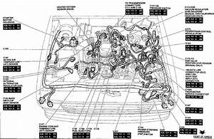 Ford 4 0 Ohv Engine Diagram