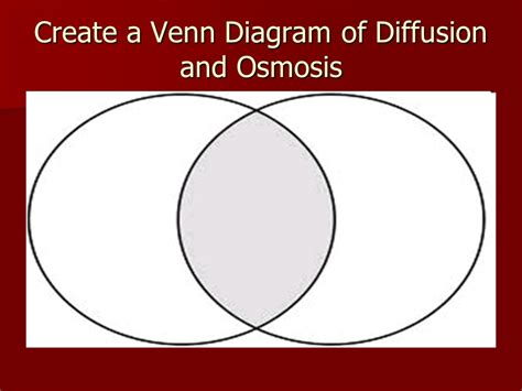 Diffusion & Osmosis S7l2  Ppt Download