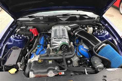 stock engine shelby gt screams  mph standing mile