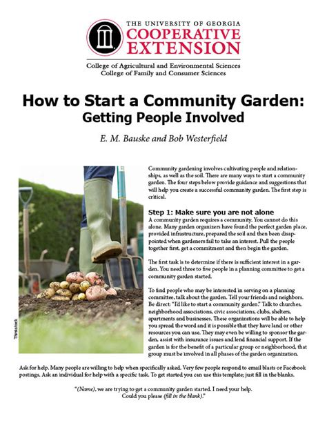 how to start a community garden how to start a community garden getting involved