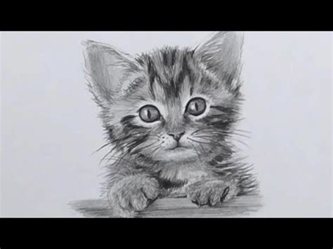 Allows you to set a chat message when no one can hear you. Simple Dessin Chat Noir Et Blanc - Get Images